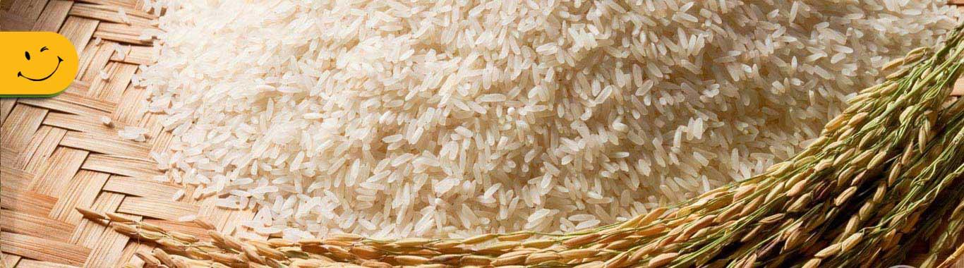 بنر برنج فروشی مزرعه